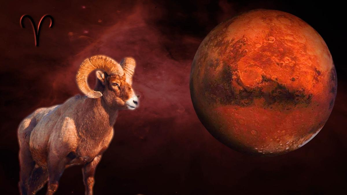 Horoscop Minerva săptămâna 10 - 16 iunie 2019 SĂGETĂTOR ...  |Horoscop 16 Septembrie 2020