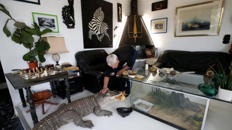 Un bărbat trăiește cu 400 de reptile în casă! Cum arată locul