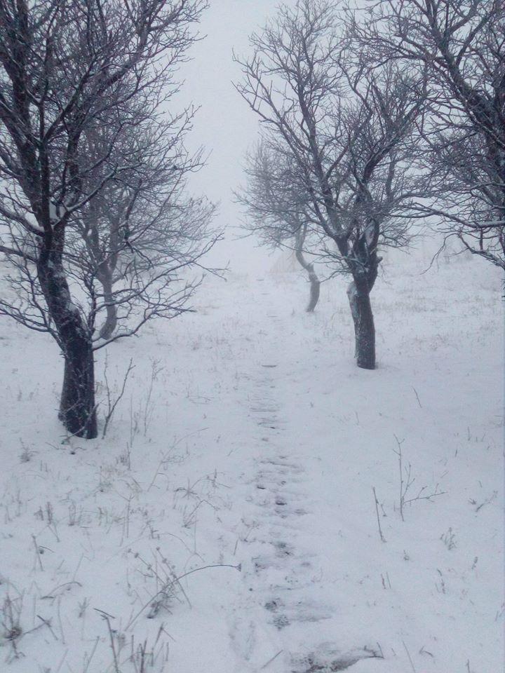FOTO/ VIDEO.  Iarnă prinde contur! Zăpada măsoara deja 10 centimetri. Peisaj de vis la Bâlea Lac și Rânca