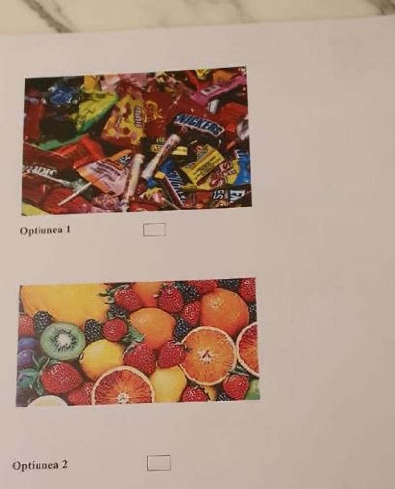 Secție de votare diferită în diaspora! În Tunisia au putut vota și cei mici! Copiii au avut de ales între fructe sau bomboane