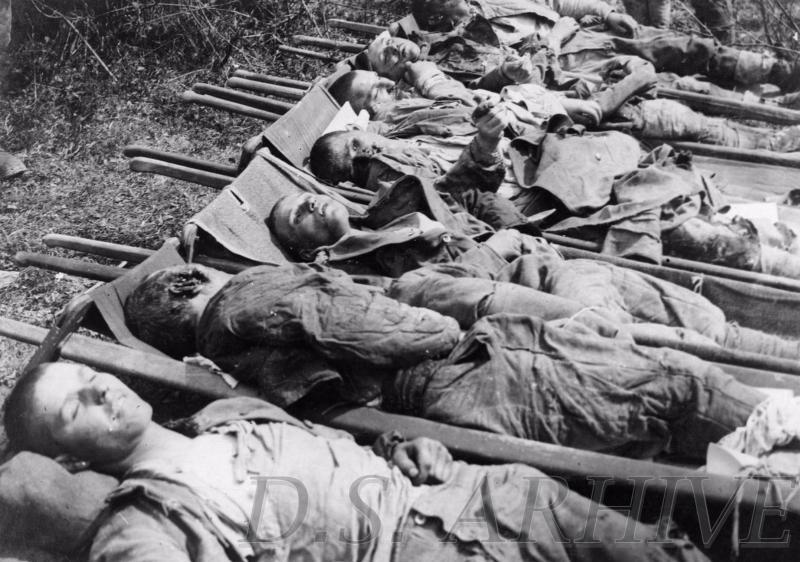 """Regimentul 11 Siret: Cum au căsăpit ungurii peste 500 de eroi români: """"Le-au tăiat nasul și urechile, le-au scos ochii""""..."""