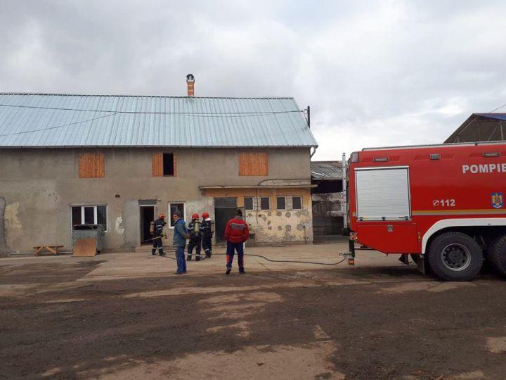 Incendiu catastrofal! Zeci de tone de rumeguș au luat foc la o fabrică din Câmpeni