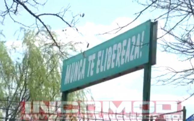 Lozinca nazistă a lagărului de concentrare de la Auschwitz, reprodusă în Prahova, pe poarta unei firme de stat