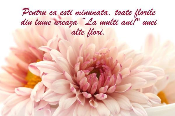 Mesaje de Florii  Cele mai frumoase urări, Sms-uri, Felicitari
