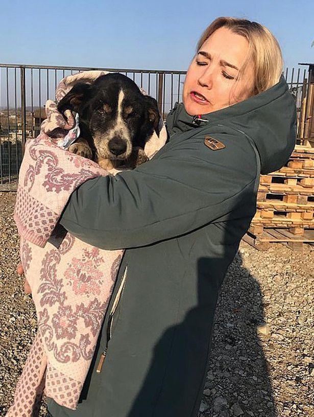 Câinele s-a întors dintre morți! Familia a trăit un adevărat șoc când a văzut minunea (FOTO)