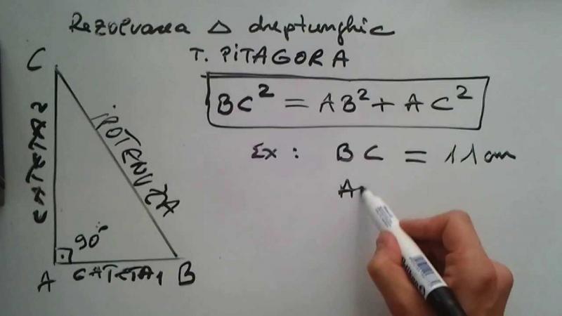 Pitagora a fost un criminal! Cum a omorât un matematician genial, în fața mai multor oameni