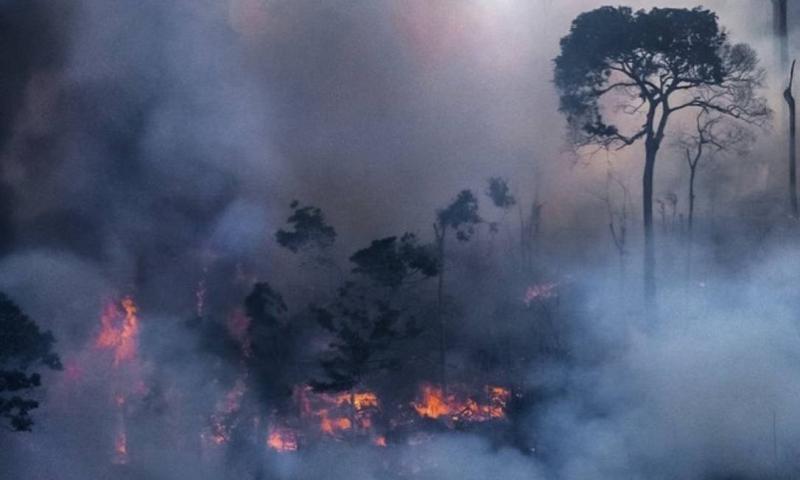 Cea mai mare pădure a planetei arde de peste 16 zile. Fumul provocat de incendii a lăsat Sao Paulo în beznă VIDEO