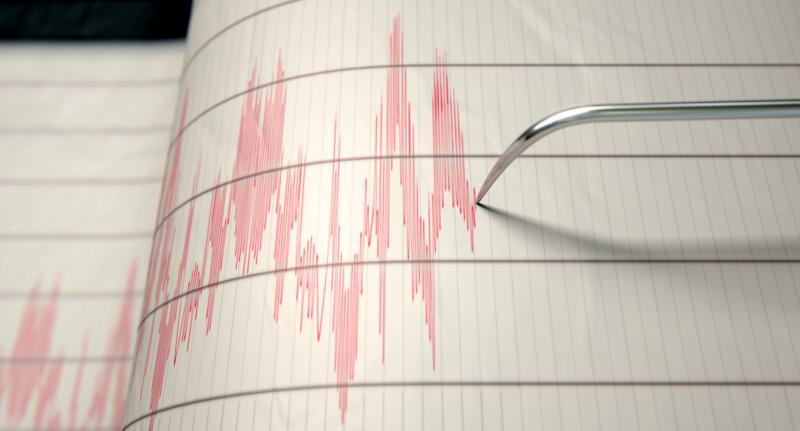 Cutremur mare în România! S-a simțit în numeroase orașe! Când s-a produs seismul