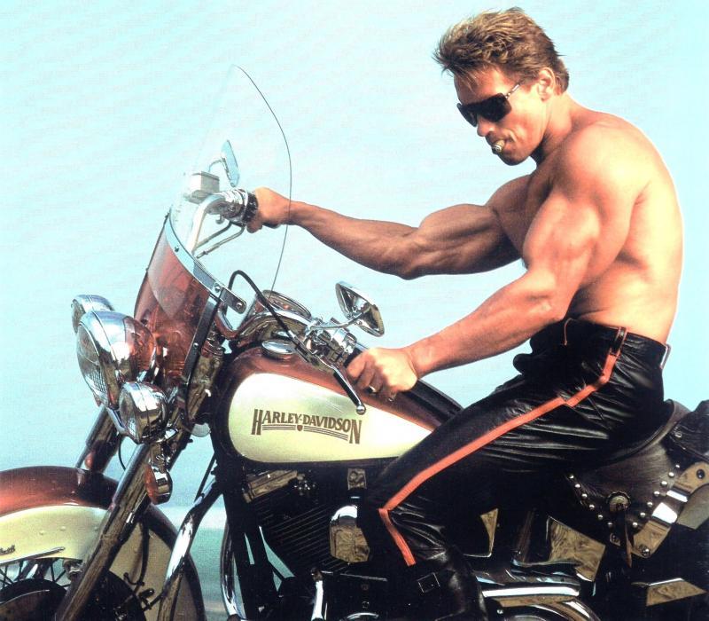 Arnold Schwarzenegger în ''Terminator 2''