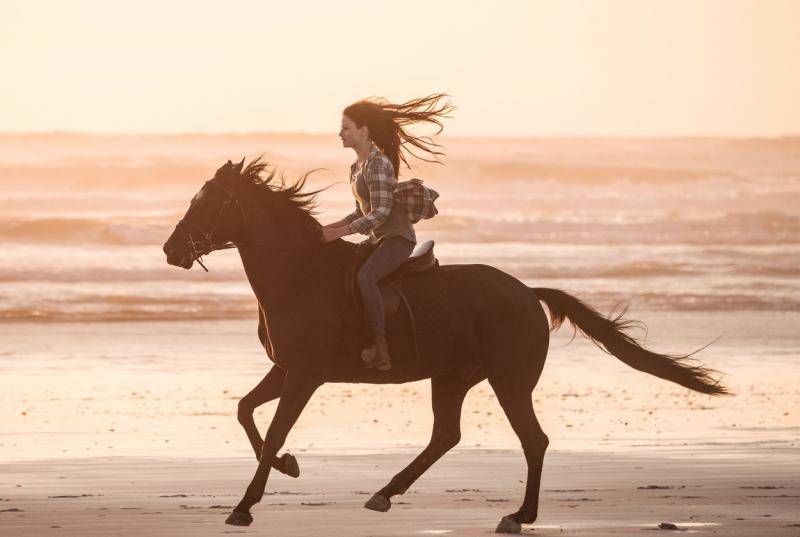 Mackenzie a adoptat recent un cal pe nume Don