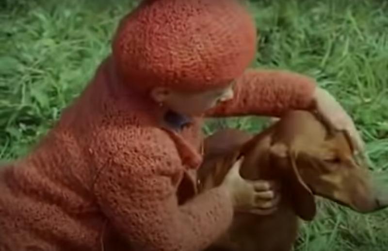 Au trecut 40 de ani. Lizuca, Patrocle, Dumbrava minunată. Filmul copilăriei noastre. Ce face azi fetița de ieri?