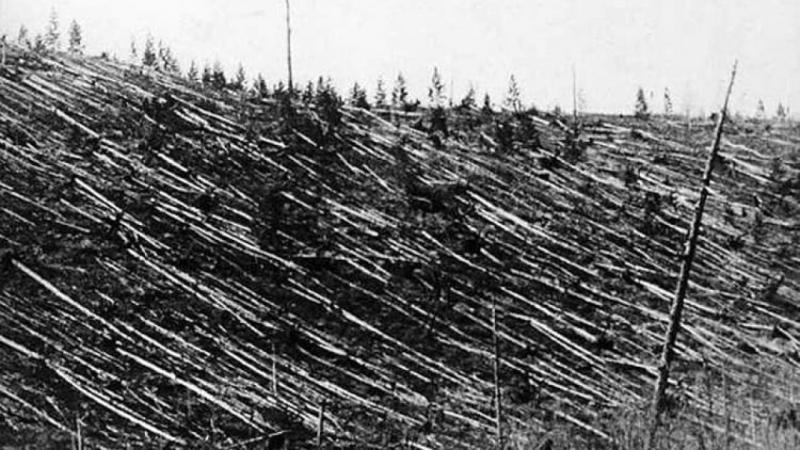 """80.000.000 arbori rași. A fost rezolvat cel mai mare mister al Omenirii. """"A zburat pe deasupra capetelor noastre cu 11,2 km/s!!!"""""""