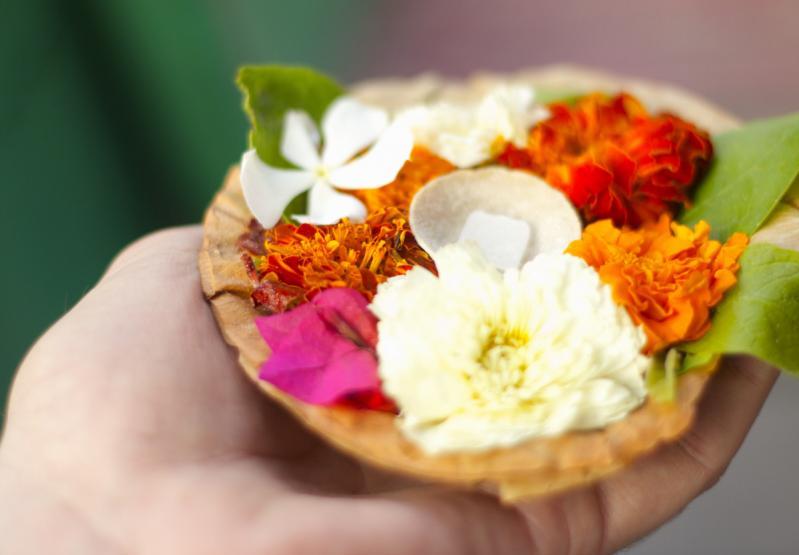 Ce flori trebuie să oferi, ca să nu transmiți mesajul greșit! Semnificația neștiută a crinilor