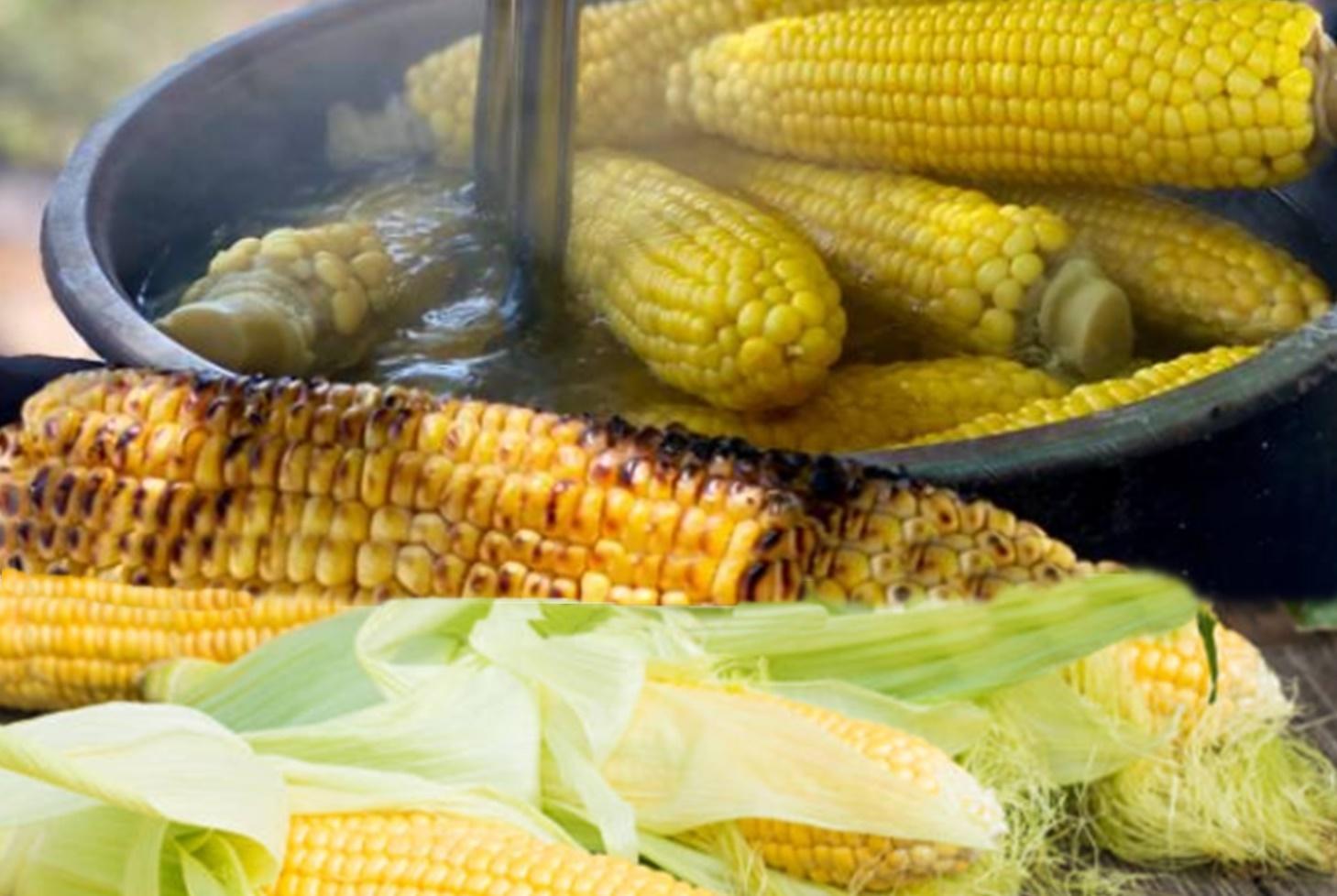 Beneficiile și dăunătorile de porumb fiert. Calorii și compoziția - Cereale