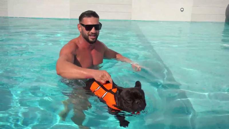 Delir pe internet! Câinele lui Dorian Popa, superstar pe YouTube! Artistul a lansat o melodie cu celebrul Cheluțu   Video