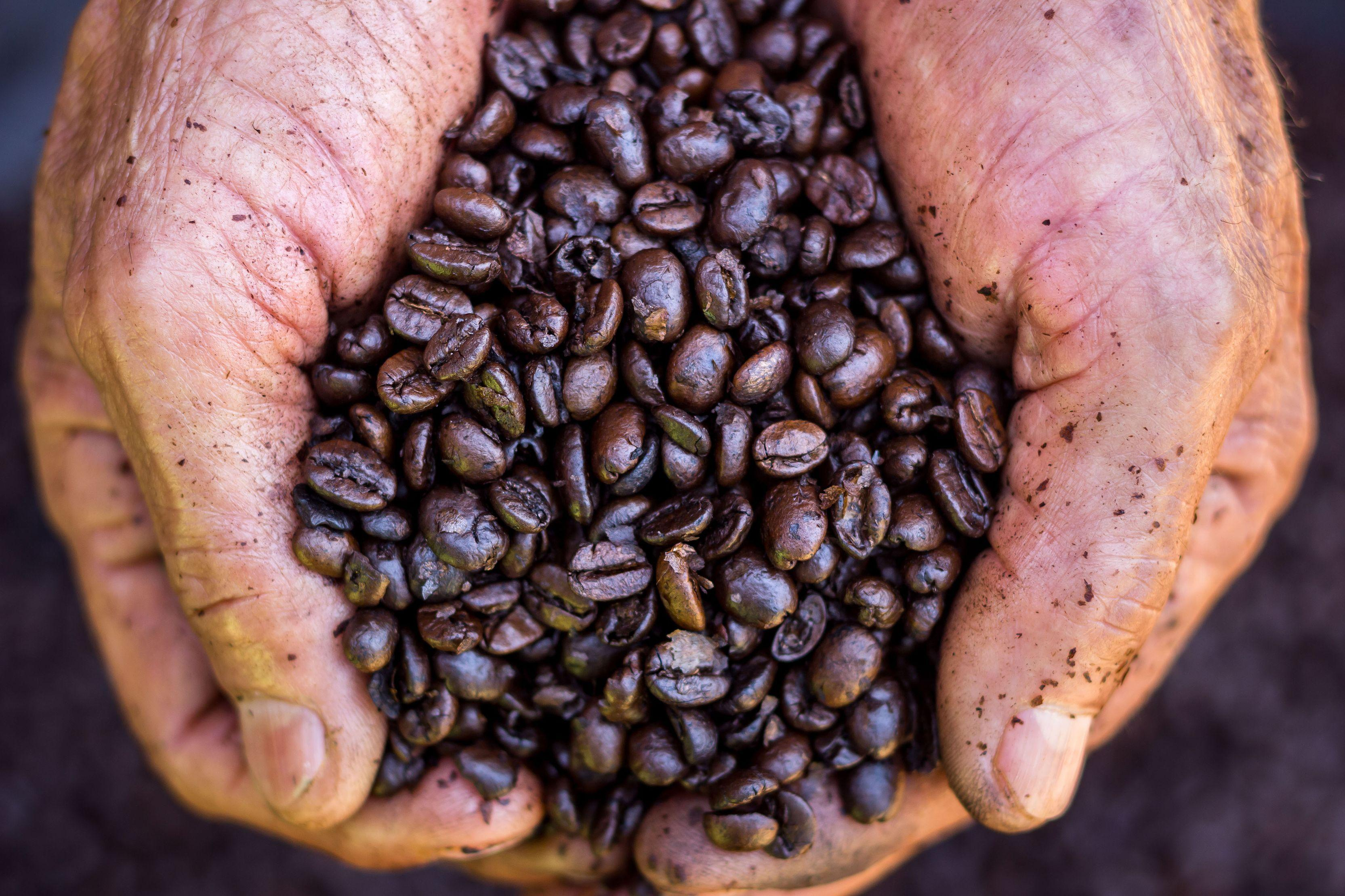 Cafea verde: ajută la slăbire?