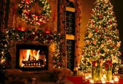 Romsilva pregătește brazii de Crăciun
