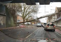 Furtuna Friederike face ravagii în Europei