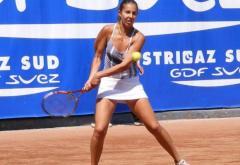 Mihaela Buzărnescu a refuzat participarea la Fed Cup