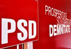 Zi plină la PSD