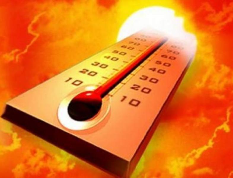 Temperaturi record şi incendii de vegetaţie în Europa şi zona Arctică