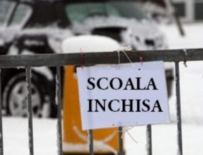 Şcoli închise din cauza gripei