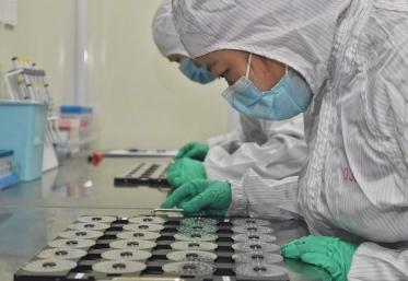 Antibioticele nu previn şi nu tratează coronavirusul