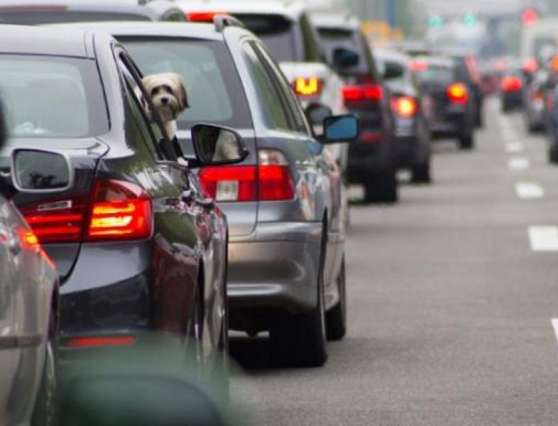 Planuri pentru fluidizarea traficului în București