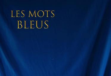 "Torpedoul lui Morar: Johan Papaconstantino - ""Les mots bleus"""