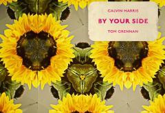 "Torpedoul lui Morar: Calvin Harris feat. Tom Grennan - ""By Your Side"""