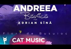 Andreea Bănică feat. Adrian Sînă - Flori de Busuioc | GRAPHIC VIDEO