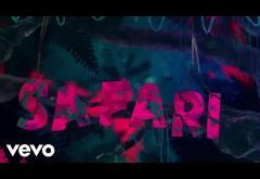 J. Balvin ft. BIA, Pharrell Williams, Sky - Safari | PIESĂ NOUĂ