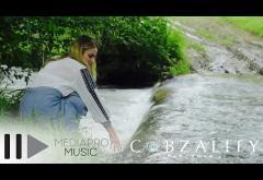 Cobzality feat. Silviu Pașca - Hai acasă! | PIESĂ NOUĂ