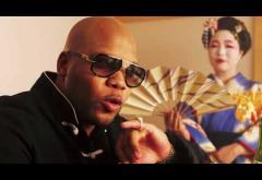 Flo Rida - Zillionaire   VIDEOCLIP