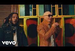 Pitbull ft. Stephen Marley - Options | VIDEOCLIP
