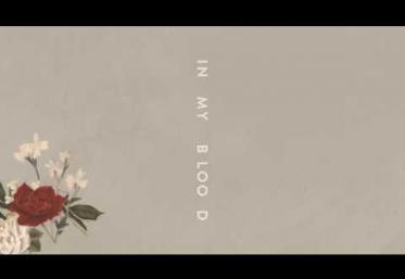 Shawn Mendes - In My Blood | PIESĂ NOUĂ