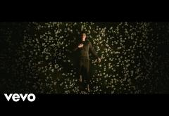Shawn Mendes - In My Blood | VIDEOCLIP