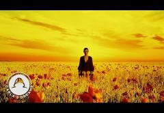 Carla´s Dreams & Deliric - Dependent (Nocturn: Act 8) | videoclip