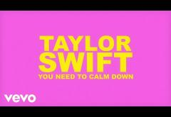 Taylor Swift - You Need To Calm Down | lyric video