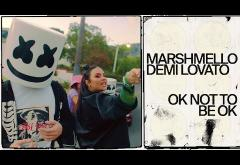 Marshmello & Demi Lovato - OK Not To Be OK | videoclip