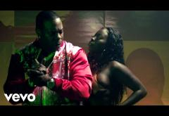 Busta Rhymes, Vybz Kartel - The Don & The Boss | videoclip