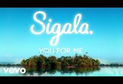 Sigala, Rita Ora - You for Me | lyric video