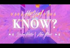 Whitney Houston x Clean Bandit - How Will I Know | lyric video