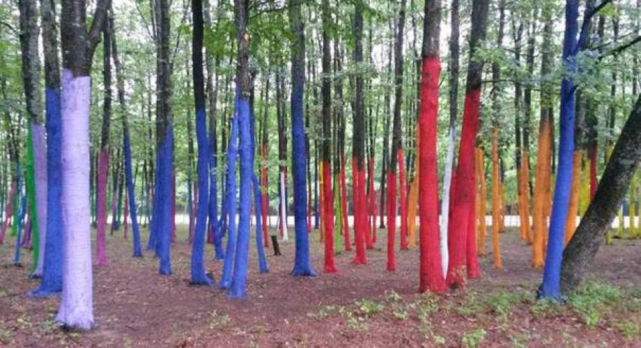 """""""Grădina Paradisului"""" - manifest artistic împotriva defrişărilor"""