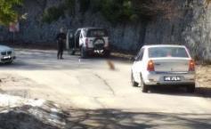 Simona din Bacău cobora spre Sinaia, de la Cota 1.400, când a văzut o creatură neobișnuită pe șosea. A tras repede mașina pe dreapta.