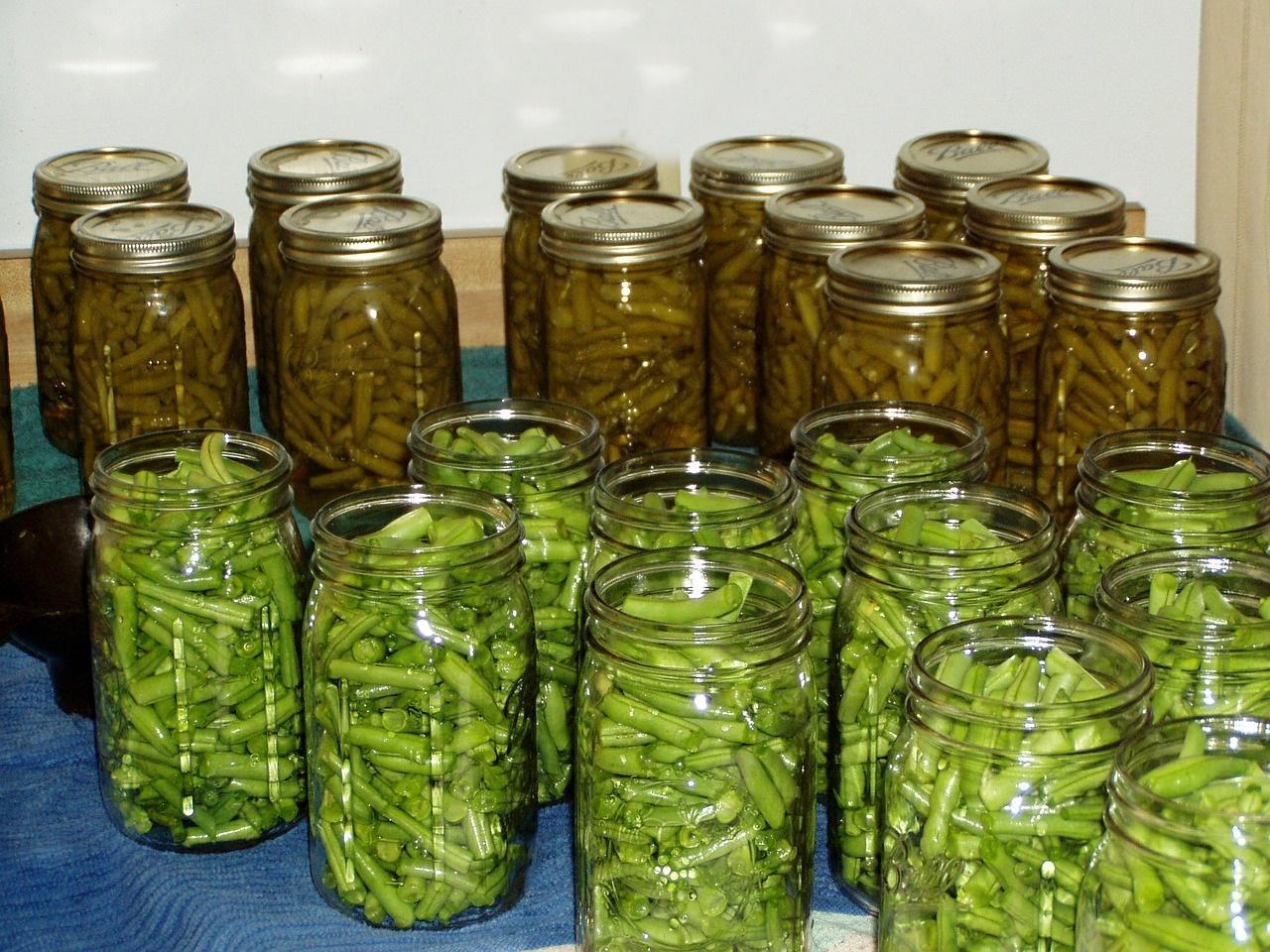 Fasole verde la borcan, conservată în saramură